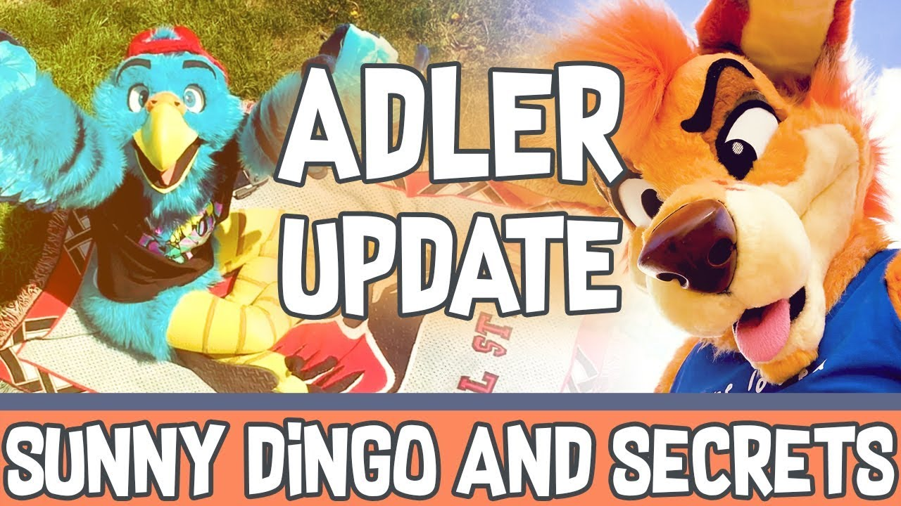 Adler Update - Sunny Dingo and Secret Projects - YouTube