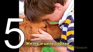 Жизнь и цель собаки  Брюс Кэмерон  5 из 7