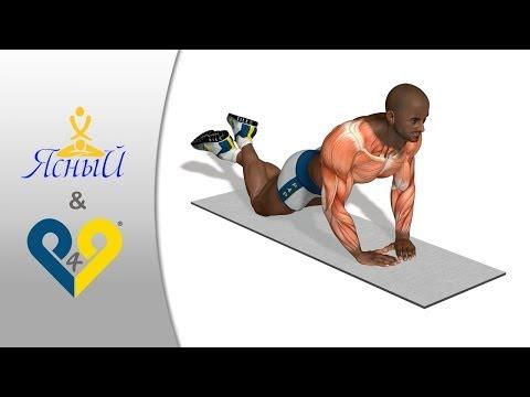 Алмазные отжимания. Упражнение для тренировки грудных мышц и трицепса