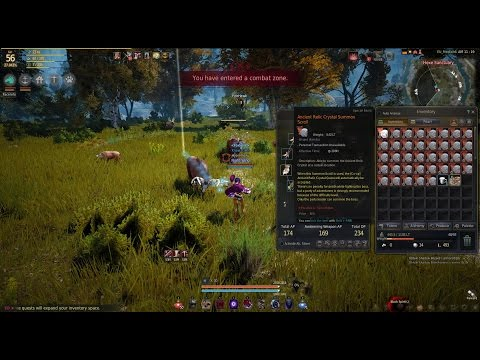 BDO 37*Ancient Relic Boss Scrolls