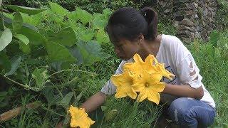 南瓜花的新吃法,现摘现做,农村姑娘的这种做法值得一学