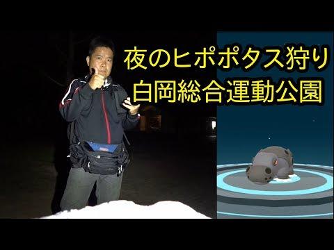 【ポケモンGO】夜のヒポポタス狩り in 白岡総合運動公園