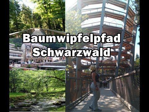 Baumwipfelpfad Schwarzwald │Selva Negra │Vlog
