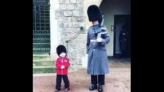 Boy, four, dressed as a mini guardsman melts hearts as he greets the real deal on a birthday