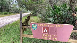 Affordable RV Camping aт Bennett Field CG, Tiger Bay State Forest, FL