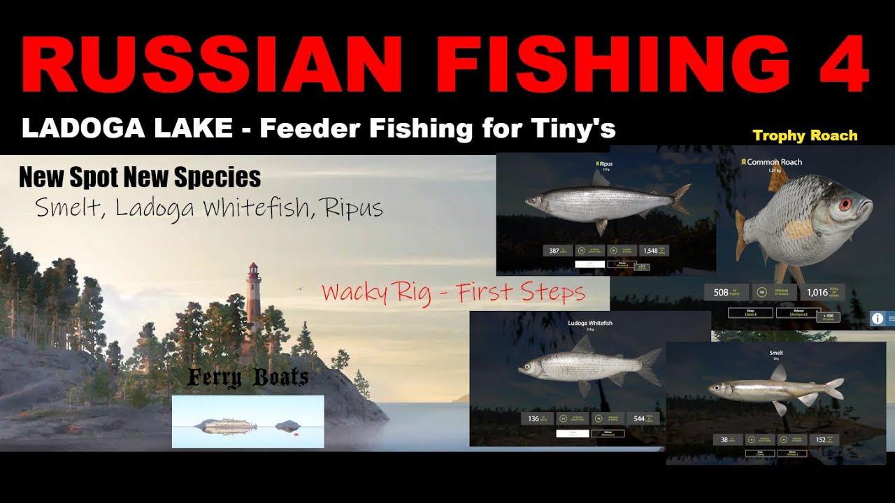 RUSSIAN FISHING 4 - Ladoga Lake FIRST ADVENTURE - Smelt ...