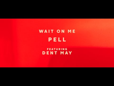 Pell - Wait On Me (feat. Dent May) (Official Video)