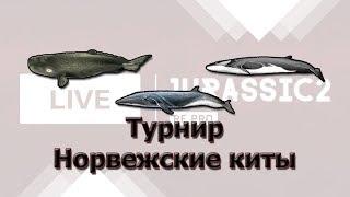 Русская Рыбалка 3.99 Турнир Норвежские киты. Стрим.