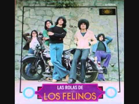 Los Felinos La Mula Bronca   Chicanas