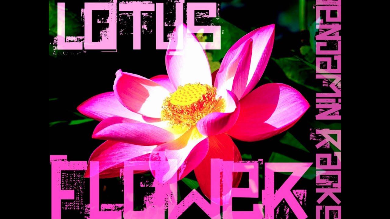 Lotus flower jacques greene remix gallery flower wallpaper hd lotus flower remix choice image flower decoration ideas benjaminracks lotus flower bomb remix youtube benjaminracks lotus mightylinksfo