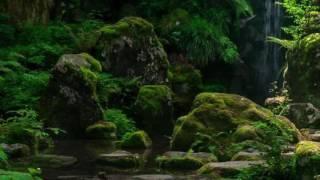 譜面 ぷりんと楽譜 演奏日 2016.5.20.