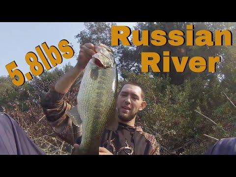 Russian River Bass Fishing ( 5.8lb Bass )