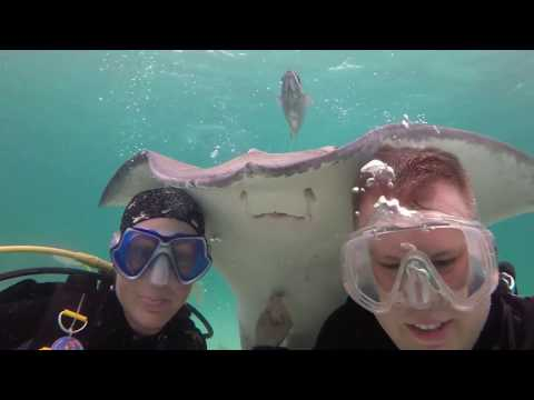 2017 Cayman Island Diving and Sting Ray City