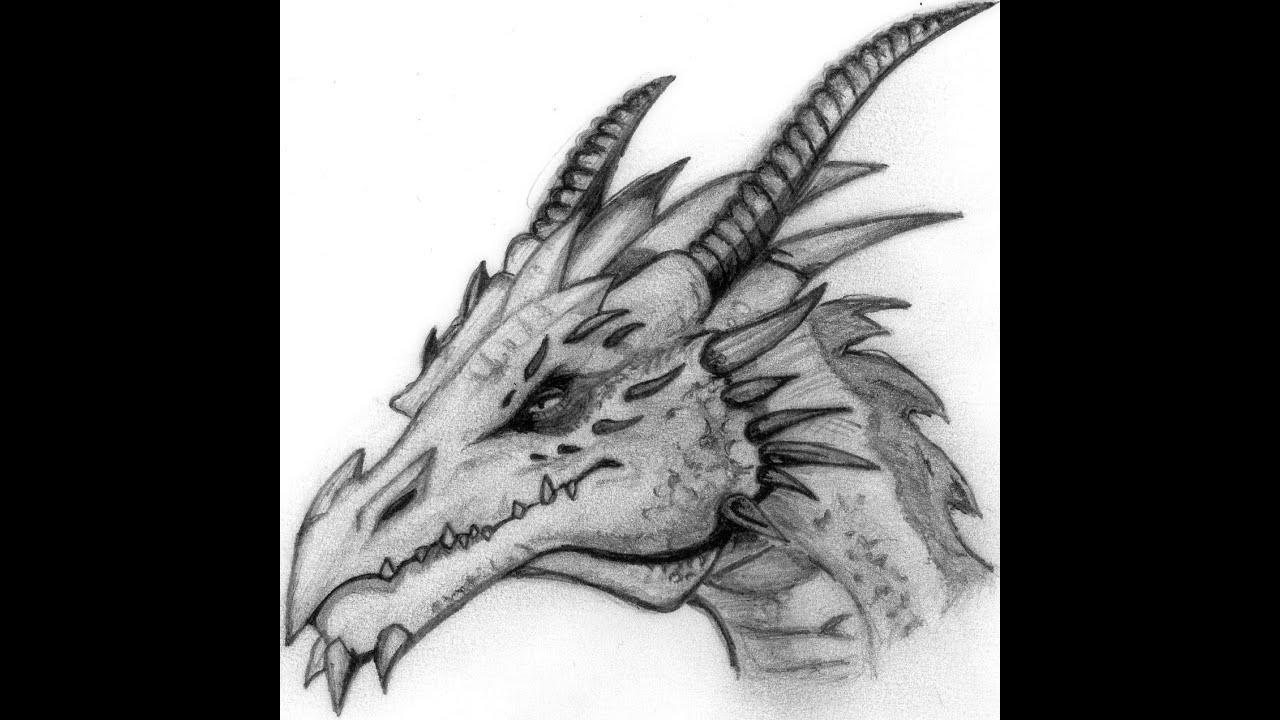 Draw Dragon Head Step Beginners