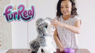 FurReal Ricky The Trick Lovin' Pup Unboxing and Playing with Riley Toys