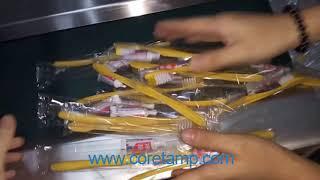 Disposable toothbrush packing machine   Coretamp