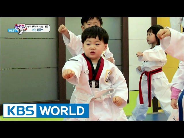 The Return of Superman - Triplets and Taekwondo