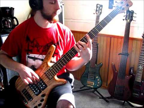 Decrepit Birth - The Resonance on bass guitar