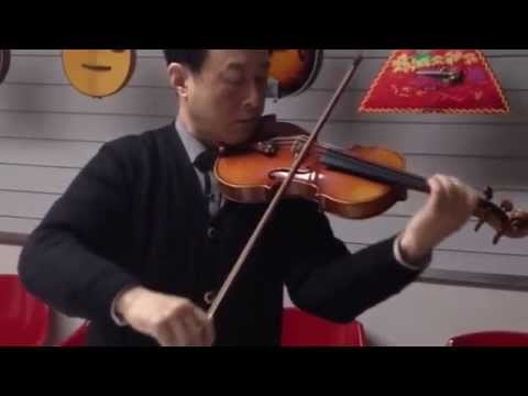 Aileen Music Profession Violin VH900Z performance