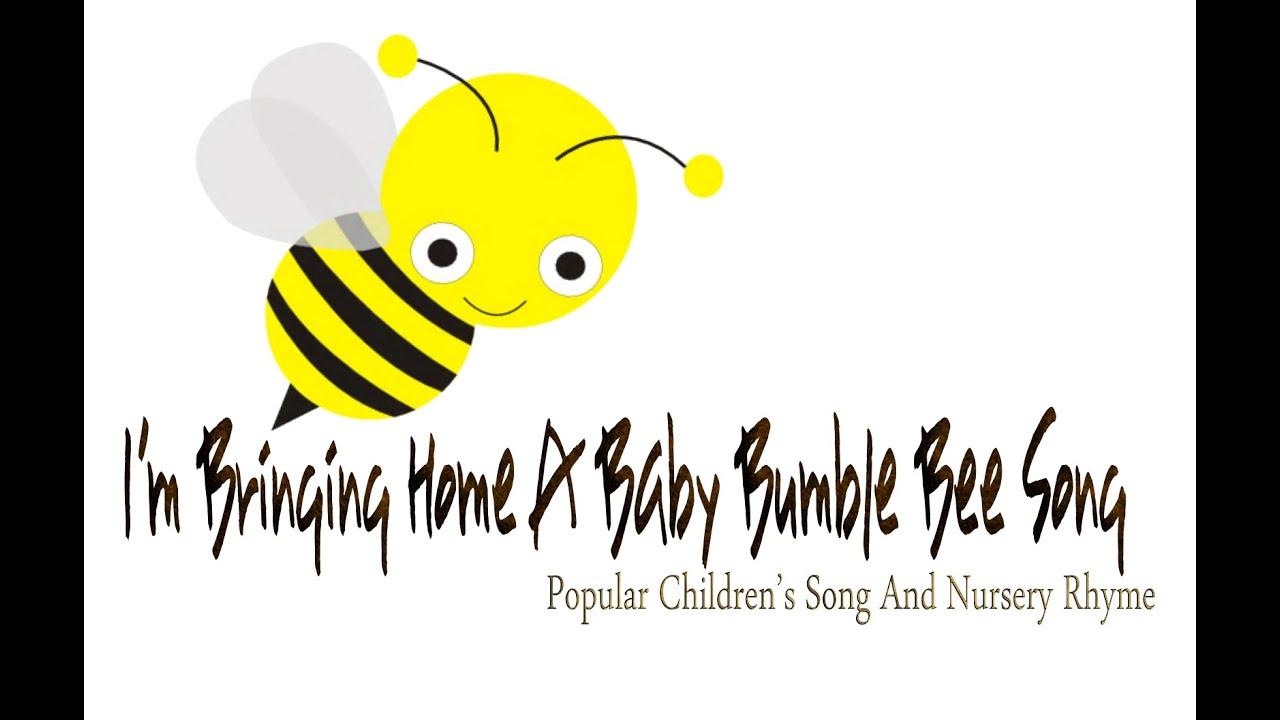 I M Bringing Home A Baby Bumblebee Kids Song