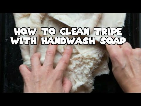 How To Clean Tripe With HandWash Soap