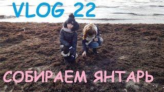 VLOG Собираем Янтарь На Море Серия 22 Черновы ТВ