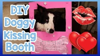 DIY Doggy Kissing Booth! Valentines Day Kissing Booth for Your Dog! Spend It with Someone Special!🐶