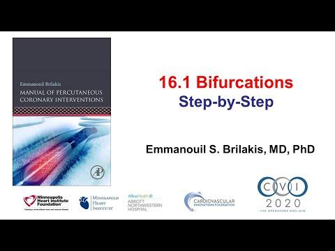 16.1 Bifurcation PCI