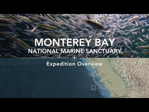 Expedition Overview: Monterey Bay National Marine Sanctuary | Nautilus Live