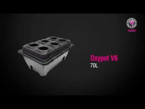 9 Piante Oxypot V9 Sistema Idroponico Dwc Nutriculture