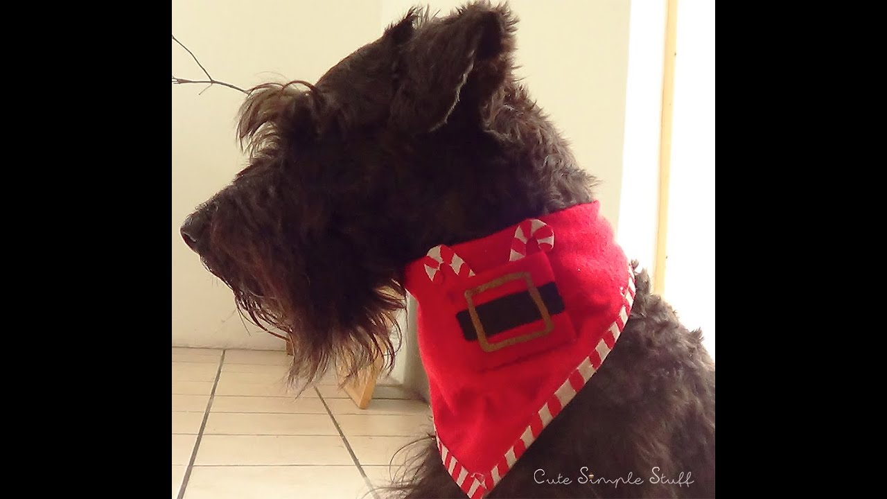 DIY Christmas Bandana for Dogs! - YouTube