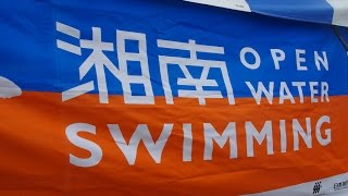 チャリティ湘南オープンウォータースイミング2015 大会模様(湘南OWS)