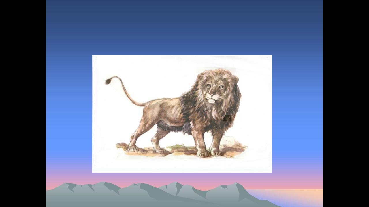 презентация к рассказу толстого лев и собачка - YouTube