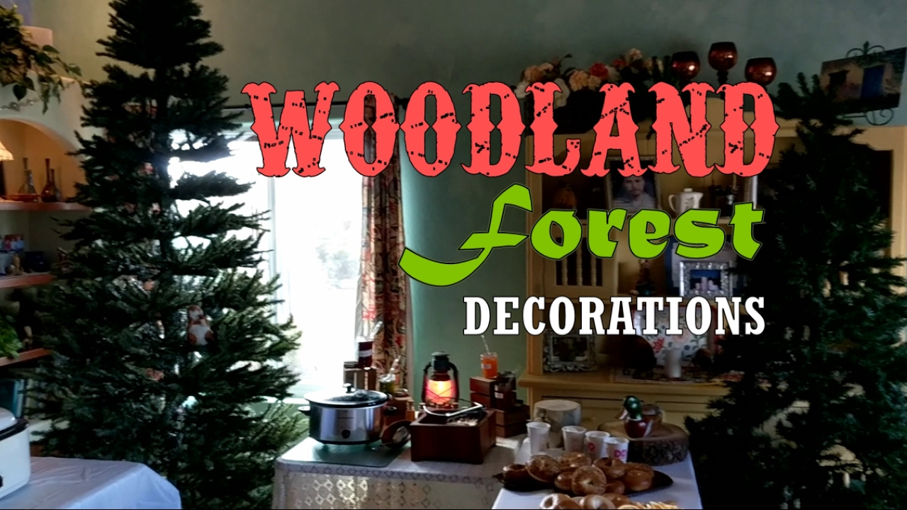 Party Decoration Ideas Woodland Forest Themed Adventure Decor