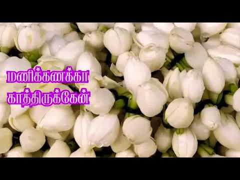 Madurai Malli Vangi Vanthan -Tamil Village Album Song- HD