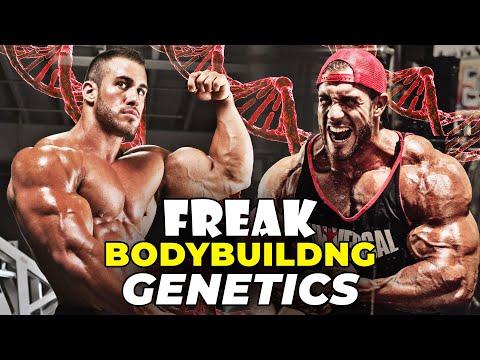 Day 1 ⇒ IFBB Pro Transformation Example Of Freak Bodybuilding Genetics