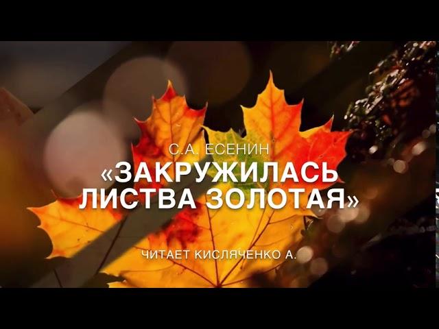 Изображение предпросмотра прочтения – АринаКисляченко читает произведение «Закружилась листва золотая…» С.А.Есенина