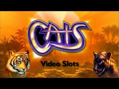 Casino Debate | Orangeville.com Slot Machine
