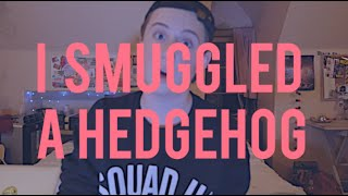 I Smuggled A Hedgehog...