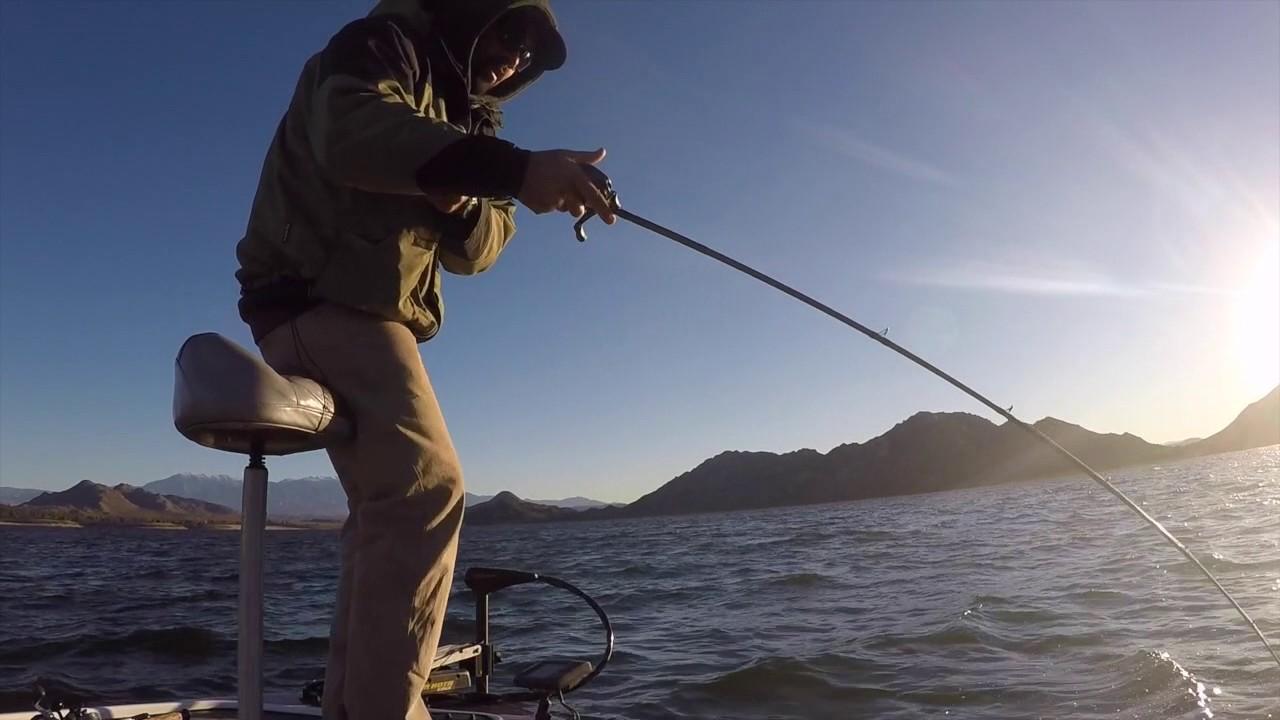 Temecula valley bass anglers perris lake big fish 6 5 for Lake perris fishing report