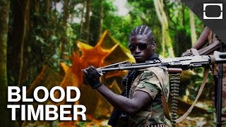 Is Timber Africa's New Blood Diamond?