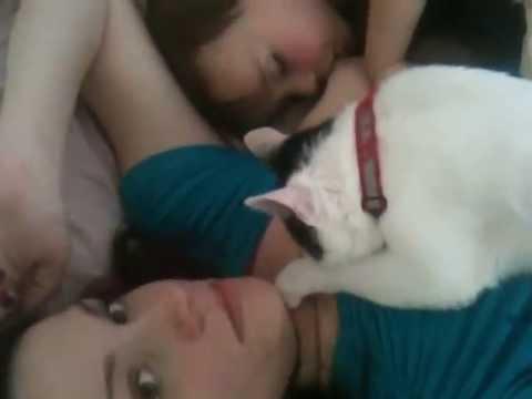 Tandem nursing - kitten and baby? thumbnail