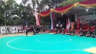 Story wa kungfu ikspi kera sakti indonesia