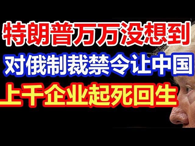 特朗普万万没想到,一条对俄制裁禁令,令中国数千企业起死回生!
