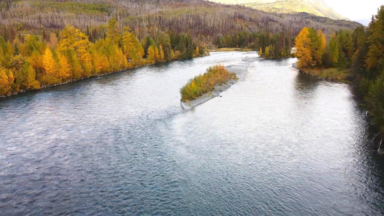 Alaska's Kenai River Salmon Run Drone Footage, with Underwater Salmon Action!