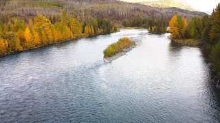 Alaska's Kenai River Salmon Run Drone Footage, with Underwater Salmon Action!