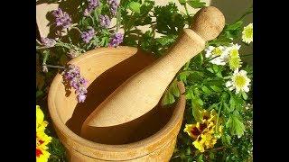 Волшебные травы для желудка, которые могут улучшить пищеварение. И большинство уже есть на кухне!