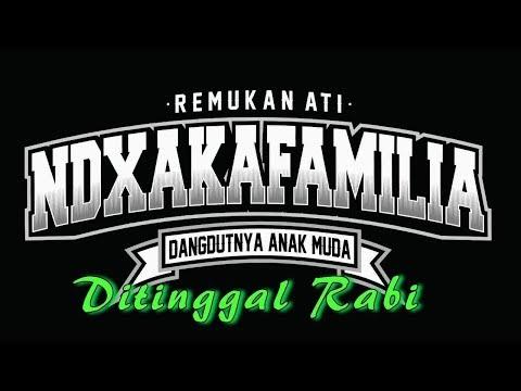 DITINGGAL RABI - NDX AKA FT PJR  karaoke dangdut (Tanpa vokal) cover