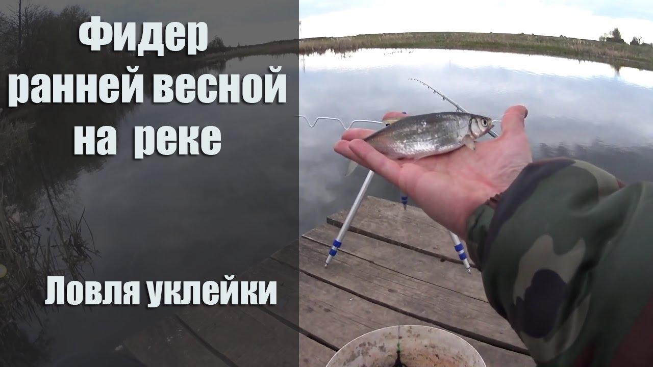 ловля уклейки весной на реке