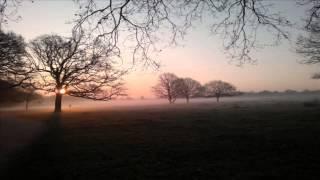 Terje Saether - Full Focus (Klartraum Deep Dub MIx)